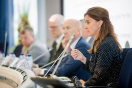 N. Zeleznik (Vice President - NTW, SLO) speaking